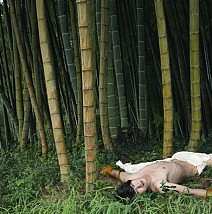 Boy Lying in the Bamboo Forest